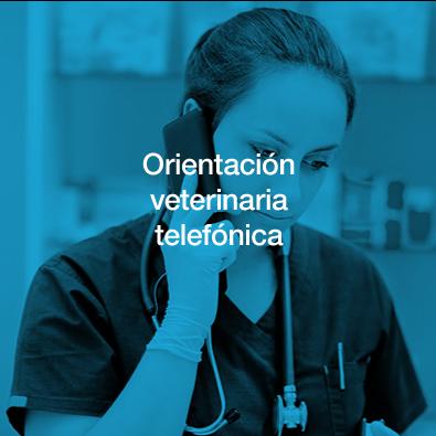Orientación veterinaria
